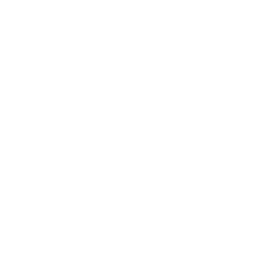 Data Insights icon